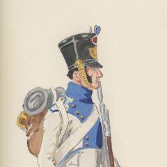 Фузилер 1-го полка, 1813 г.