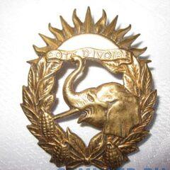Вытянутая по вертикали эмблема ВС Кот-д'Ивуара, предназначенная для ношения на беретах.