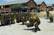 Martial arts demonstration, Ukrainian military
