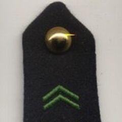 Погон нижнего чина армии Того.