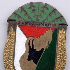 Нагрудный знак жандармерии Мадагаскара.