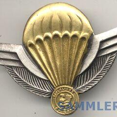 Значок парашютистов.