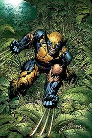 Wolverine 02