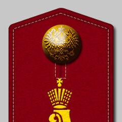 Погон 16-го стрелкового полка (с 1880 года).