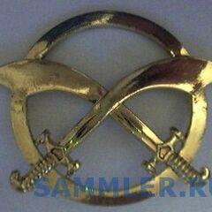 Армейская эмблема, которую носят на берете или фуражке.