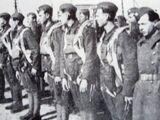 2-я чехословацкая отдельная воздушно-десантная бригада