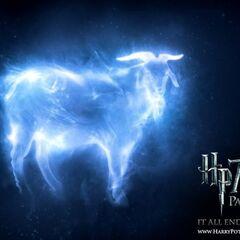 Патронус-козёл Аберфорта Дамблдора.