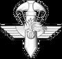 G.I.S. - Gruppo di Intervento Speciale - Stemma