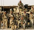 Силы специального назначения армии США