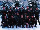 Крестоносцы (добровольческий отряд)