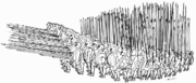 Makedonische phalanx