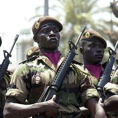Коричневые береты — спецназ Сенегала. На беретах видна общевойсковая эмблема.