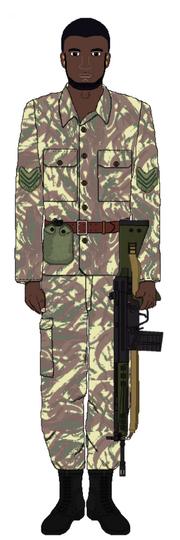 Uganda tanzania war 1978 79 amin ousted by adyb234-d8xx7xe