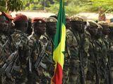 Вооружённые силы Мали