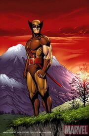Wolverine 400