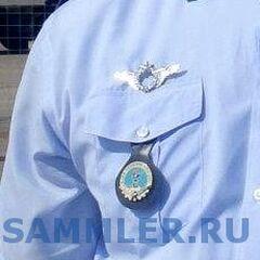 Неустановленный знак военного пилота и, предположительно, эмблема авиабазы.