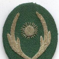 Эмблема вооруженных сил Нигера — изображение солнечного диска в венке из листьев и початков кукурузы. Эту эмблему военнослужащие армии и жандармерии носят на фуражках, петлицах и погонах.