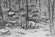 Confederate army10