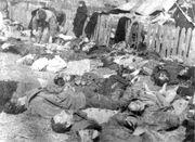 Lipniki massacre