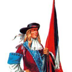 Знаменосец полка