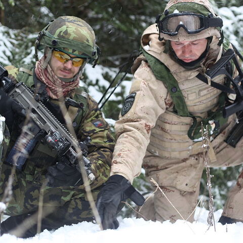 Чешский (слева) и хорватский (справа) солдаты.