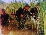 Силы специальных операций КНДР