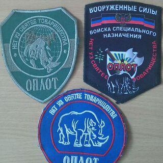 Шевроны батальона.