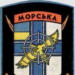 Отдельный зенитно-ракетный дивизион Морской пехоты.
