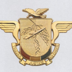 Современная эмблема ВВС.
