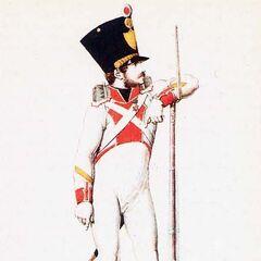 Сержант фузилеров 2-го линейного полка, 1814 г.