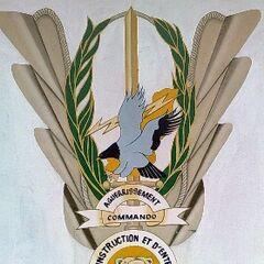 Знак центра подготовки коммандос, который носят над левым нагрудным карманом.