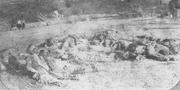 Confederate army 43