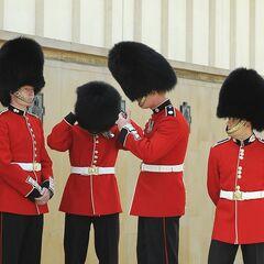 Гвардейцы 4 разных королевских полков вместе.