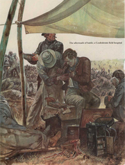 Confederate army17