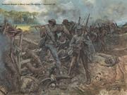 Confederate army15