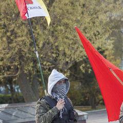 Одесский дружинник в Измаиле, 6 апреля 2014 г.