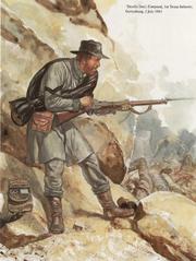Confederate army2