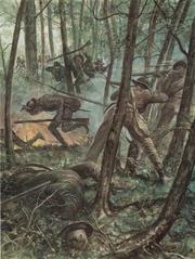 Confederate army3