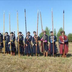 Польские пикинеры (национального образца), Реконструкция битвы на Жебне, 2011 г.