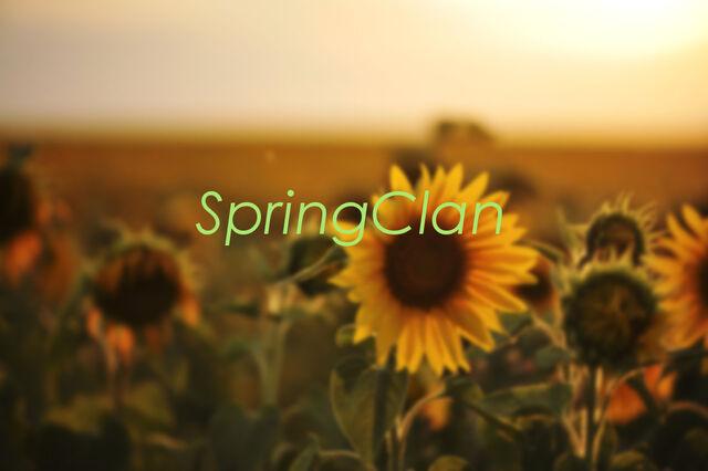 File:Springspringspring.jpg