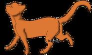 Rennder KojoteShading