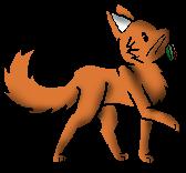 Rennender Kojote&Kräutershading