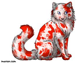 Fuchsfeder