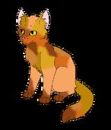 Koyotenpfote1