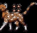 Tigerblüte (By Leo)