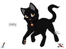Addy (by Sonnenschatten)