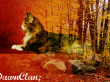 DawnClan/Original Version