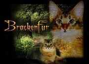 Brackenfur
