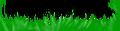 Miniatuurafbeelding voor de versie van 28 jul 2015 om 20:38