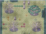 ShadowClan Territory